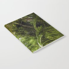 Giant Palms Notebook