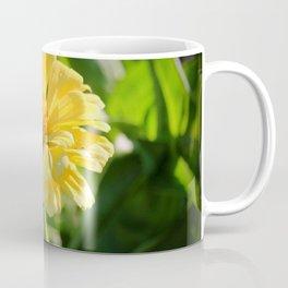 Sunlit Daisy Coffee Mug