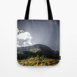 Desert in the Pacific NW Tote Bag