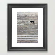 Doge on stairs Framed Art Print