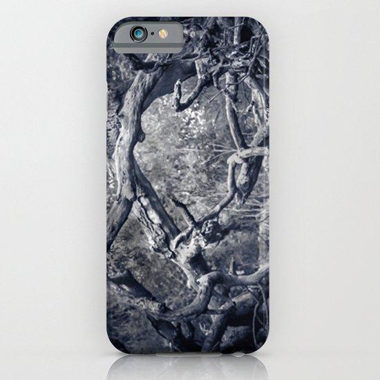 Twisted Window iPhone & iPod Case