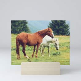 Romanian Horses Mini Art Print