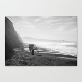 Torrey Pines in Black and White Canvas Print
