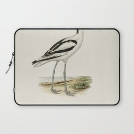 Pale Harrier Pallid Harrier female (Circus macrourus) illustrated by the von Wright brothers Laptop Sleeve