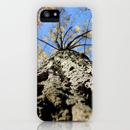 Cooper Smith Park iPhone Case