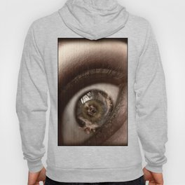 Only Through My Eyes Hoody
