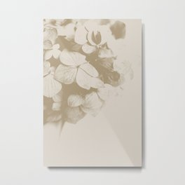 All bloomed out Metal Print