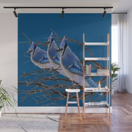 THREE AMERICAN BLUE JAYS ART BLUE WINTER ART Wall Mural