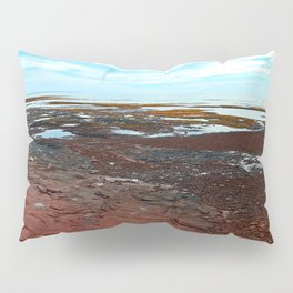 Point Prim Tidal Shelf and Coastline Pillow Sham