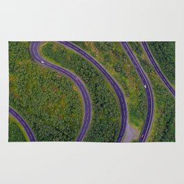 Sinuous road Rug