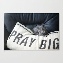 Kitty Prayers Canvas Print
