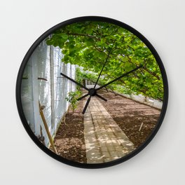 The Lost Gardens of Heligan - The Peach House Wall Clock