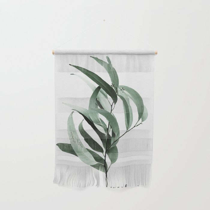 Eucalyptus - Australian gum tree Wall Hanging