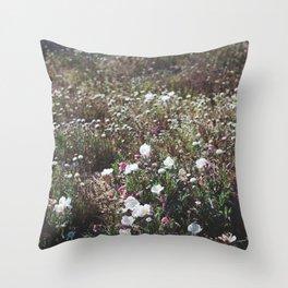 Spring in the Mojave Desert Grasslands Throw Pillow
