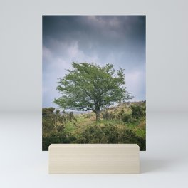 Dartmoor Tree Mini Art Print