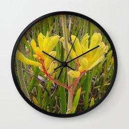 Yellow Kangaroo Paw Plant Wall Clock