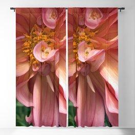 Peachy Swirls Blackout Curtain