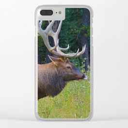 Bull Elk shows off his rack in Jasper National Park Clear iPhone Case