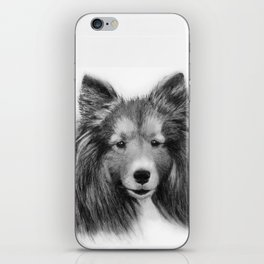 Shetland Sheepdog iPhone Skin