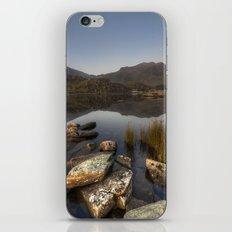 Ogwens Moon iPhone & iPod Skin
