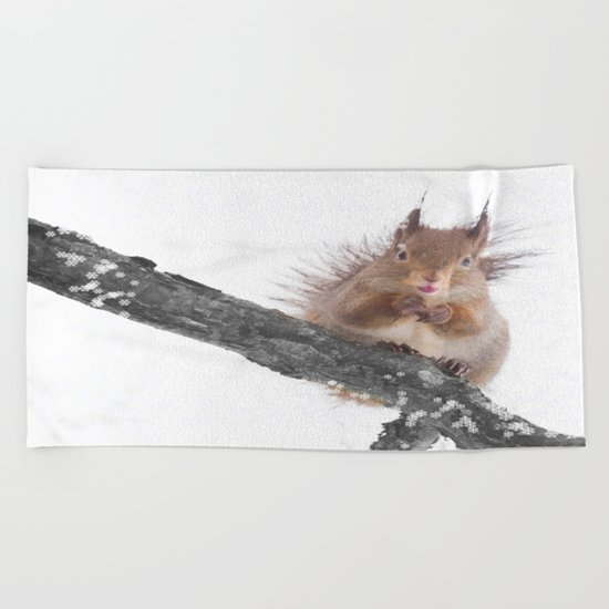 Little squirrel - smack! Beach Towel