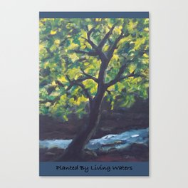 Planted by Living Waters AC181121a Canvas Print