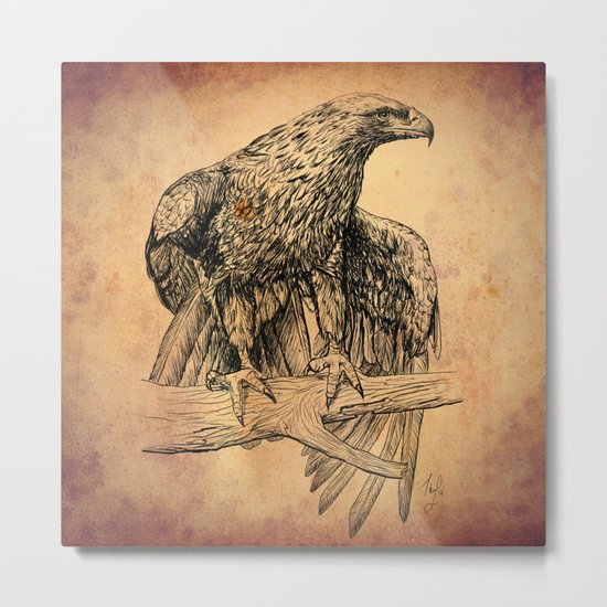 Falcon illustration Metal Print