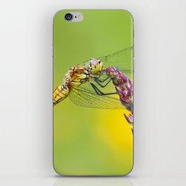 "Yellow dragonfly ""Sympetrum striolatum"" iPhone Skin"