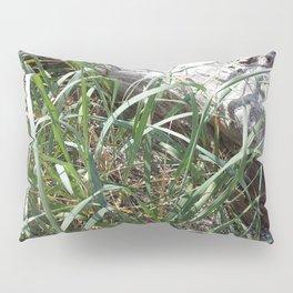Pointe Grass 203 Pillow Sham