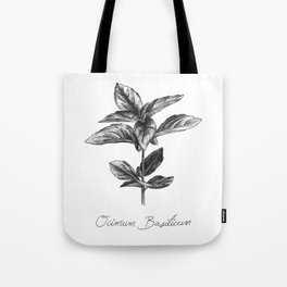 Basil Botanical Illustration Tote Bag