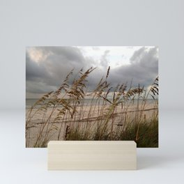 Sea Oats &Rain Mini Art Print