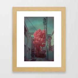 Infrapink 01 Framed Art Print