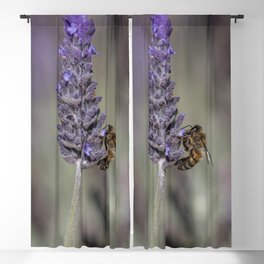 Bee on Lavender Blackout Curtain
