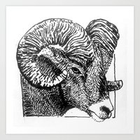 Big Horn Sheep Art Print