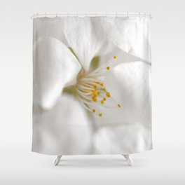 Bloom in Hiding Shower Curtain