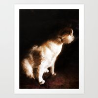 Bonnie in the light Art Print