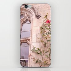 Rose Window iPhone & iPod Skin