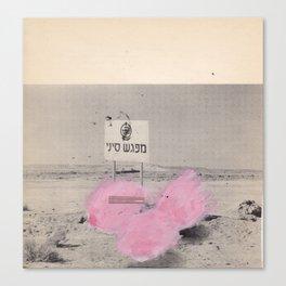 pink2 Canvas Print