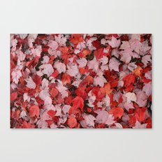 Autumn Leaves Red Shade Canvas Print