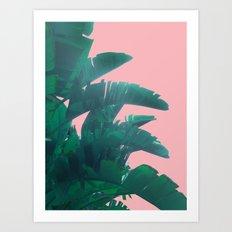 Banana Leaves on pink Art Print