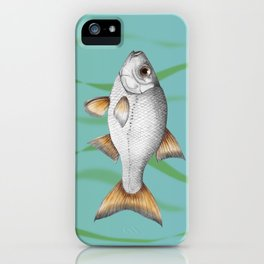 Common roach fish iPhone Case