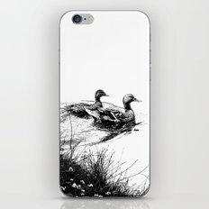 swim, swam iPhone & iPod Skin