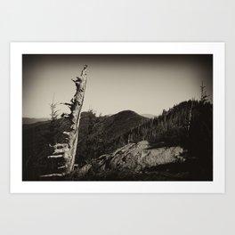 The Black Mountains Art Print