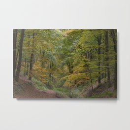 Autumn Woodland - 1 Metal Print