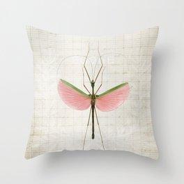 Pink Walking Stick Throw Pillow