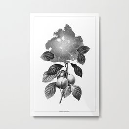 Brooklyn Botanicus Metal Print