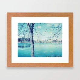 Hunter Valley Gardens Polaroid Framed Art Print