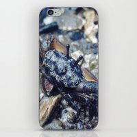 crab iPhone & iPod Skins featuring Crab by Louis Bullock
