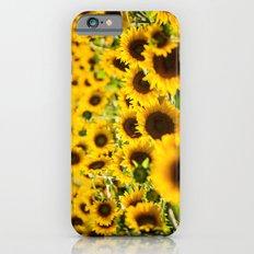 Through Fields of Light - Sunflowers iPhone 6s Slim Case