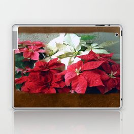Mixed color Poinsettias 3 Blank P3F0 Laptop & iPad Skin